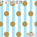 [AB5★] コスモ ストライプと金色水玉 Cブルー系 10cm AP-05808-2 オックス生地