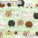 [BE4] コスモ もちもち猫フレンズ Cミント系 10cm AP-12904-2 Wガーゼ生地