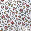 [AB4] イブキ 秋の小花柄 Aホワイト系 10cm N-99096-2 シーチング生地 (401)