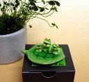 カエル 置物[葉っぱに乗ったカエルさん]木の葉蛙 3匹 葉のり蛙 陶器製