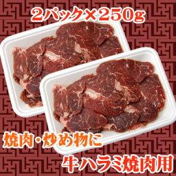 【商番1101】【11時までの注文で当日発送!(水日祝除く)】 牛ハラミ焼肉用 500g(250g×2)