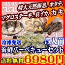 [送料無料]海鮮バーベキューセット 5人前 海老、ホタテ、マグロ、イカ、カキの5種類が楽しめる【smtb-MS】