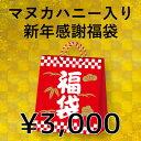 【数量限定】新年感謝福袋 3,000円