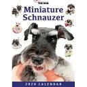 ショッピング卓上カレンダー 2020年版 THE DOG 卓上カレンダー ミニチュア・シュナウザー