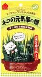 【送料3903500以上で】ネコの元気草の種 15g×5袋(容器なし)