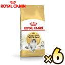 楽天マペット【お得なケース売り】ロイヤルカナン(ROYAL CANIN)ノルウェージャンフォレストキャット フィーライン ブリード ニュートリション 成猫用 生後12ヶ月齢から12歳まで 1ケース(2kg×6個)