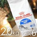 楽天マペット【お得なケース売り】【送料無料】 室内猫用 ロイヤルカナン インドア 2kgx6袋