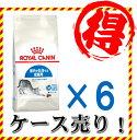 【お得なケース売り】【送料無料】 室内猫用 ロイヤルカナン インドア 2kgx6袋