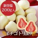 【送料無料】デパ地下などで人気♪【神戸】いちごトリュフ(白)200g【友チョコ・自分買いに♪】