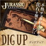 【恐竜】最高級チョコレートを使った、割って!掘って!楽しむチョコレート★ジュラシックショコラ【ディグアップ】(チョコレート)【お子様へ】