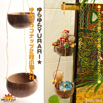 Hanging tidy two-stage Asian goods wobbling YURARI ♪ shake coconut 2 wristlet T @F0800 fs3gm