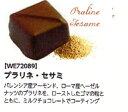 プラリネ セサミ (ボンボン・オ・ショコラ) ゴマ入りチョコレート 100個