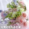 花束・切花のイメージ