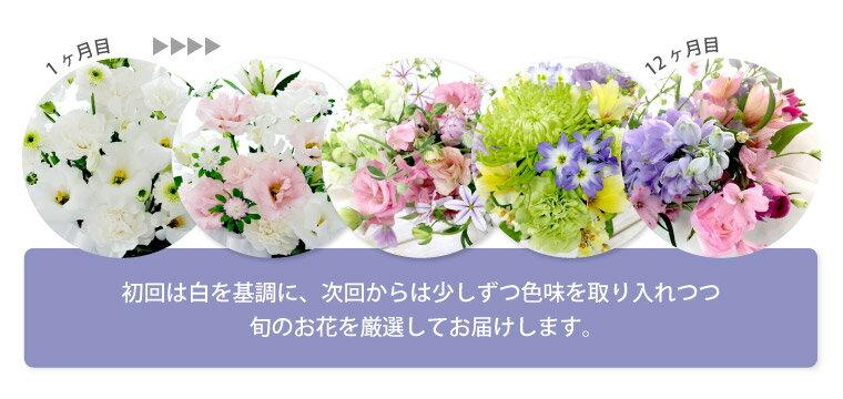生花『花の定期便(月命日)【虹コース12ヶ月】...の紹介画像3