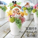 【あす楽16時まで】 ペット お供え 花...
