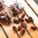 [花材・ナチュラル]エゾ松ぼっくり5個セット クリスマスリース おしゃれ 松ボックリ