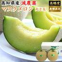 ショッピング苗 高知県産 マスクメロン 土佐の楽園 大玉(約1,5kg×2) お取り寄せ 母の日 ご家庭用 高級 ギフト フルーツ 果物 送料無料