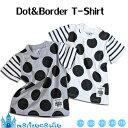 ドット&ボーダー半袖Tシャツ(2colors)