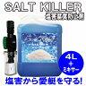 錆びる前に!! ソルトキラー(塩害腐食防止剤) 4L+ミキサー