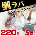 タイラバ タングステン ヘッド 鯛ラバ 220g 5個セット 鯛カブラ ルアー 遊動式 のっこみ タイカブラ 真鯛 青物 底物 底取り 重り 自作 ディープタイラバ ディープドテラ ドテラ流し ロックフィッシュ 根魚