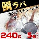 タイラバ タングステン ヘッド 鯛ラバ 240g 5個セット 鯛カブラ ルアー 遊動式 のっこみ タイカブラ 真鯛 青物 底物 底取り 重り 自作 ディープタイラバ ディープドテラ ドテラ流し ロックフィッシュ 根魚