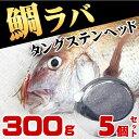 タイラバ タングステン ヘッド 鯛ラバ 300g 5個セット 鯛カブラ ルアー 遊動式 のっこみ タイカブラ 真鯛 青物 底物 底取り 重り 自作 ディープタイラバ ディープドテラ ドテラ流し ロックフィッシュ 根魚