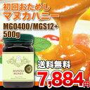 マヌカハニー MGO400 MGS12+ 500g 【あす楽...