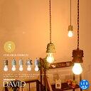 【DAVID:ダヴィデ】ペンダントライト 照明 LED電球対応 アンティーク ダイニング 玄関 廊下 トイレ 階段 日本製 レール多灯(要プラグ) アジアンテイスト デザイナーズ 照明 ライト 簡単取付 レンジ レトロ モダン デザイナーズ mercros メルクロス 送料無料 【10P02Mar14】