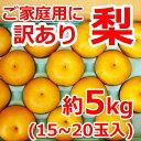 【訳あり】本貯蔵梨15〜20玉(約5kg)味は秀品同様、みず...
