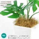 【単品購入専用】ココファイバー(ブラウン)100g 椰子の繊維 鉢物の装飾マルチング材に重宝するエコ素材♪