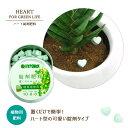 【錠剤肥料】観葉植物用 置くだけ簡単♪可愛いハート型肥料(ハイポネックス錠剤肥料)