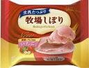 ショッピングアイスクリーム グリコ 牧場しぼり いちご 24入
