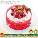 ワンちゃんと一緒に食べられる!コミフ豆乳クリームのクリスマスケーキ【310_X】  10P03Dec16