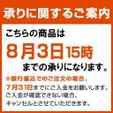 初回限定!!お試しセット【送料無料】【500円】【ワンコイン】おひとり様1点限りのお申込みです。
