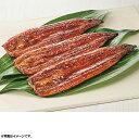 ショッピングメロン お中元 ギフト 果物山形県産しっかり娘(赤肉メロン)2玉(1玉約1.6kg)(220_20夏)