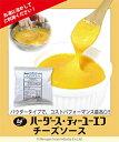 ハーダース ティーユーエフチーズソース【200g×24袋入】本州は送料無料でこの価格!