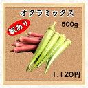 【三浦野菜】【訳あり】オクラミックス 500g 【送料半額】【東日本】