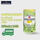 ★送料無料★サンペレグリノ オーガニック+ティースパークリングレモン250mlx24缶