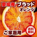 【送料無料】愛媛県 西宇和産ブラッドオレンジ 小玉 3Kg(2S〜S混合)【タロッコ】【訳あり・家庭用】