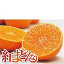 【送料無料】愛媛県産 紅まどんな L〜2L(12〜15玉)約3kg【化粧箱入り】】【紅マドンナ
