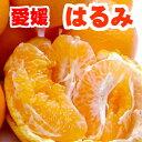 【送料無料】愛媛県産 はるみ M 5kg【家庭用】