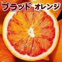 【送料無料】愛媛県 西宇和産ブラッドオレンジ 小玉 5Kg(2S〜S混合)【タロッコ】【