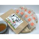 【送料無料】 国産ヤーコン茶(1.5g×10包入)お試しパック ポリフェノール豊富 ティーバック/メール便