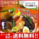 【メール便 送料無料】カレー屋さんの味 スープカレーの素 濃縮スープ2袋入 MIXスパイス付