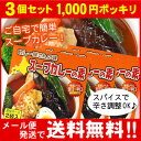 【お買い得3個セット】【メール便♪送料無料】カレー屋さんの味スープカレーの素濃縮スープ2袋入×3個セット(MIXスパイス付)Curry World カレーワール...