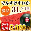 でんすけすいか【優品】3L(8〜9kg)1玉(伝助西瓜・デンスケスイカ)【送料無料】