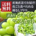 【訳あり】ぶどうシャインマスカット(2房)
