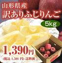【訳あり】山形産ふじりんご5kg