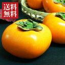 山形県産庄内柿5kg[29〜33玉]