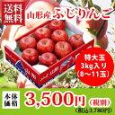 山形産ふじりんご特大玉3kg[8個〜11個][ap03]